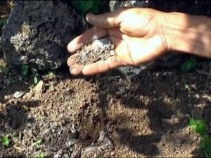 Bón phân ảnh hưởng đến đất trồng