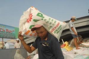 Giá phân lân, DAP thế giới năm 2013