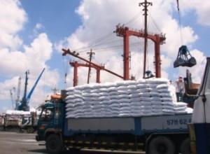 Nhập khẩu phân bón năm 2013