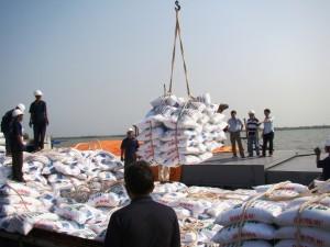 Thị trường phân bón thế giới và Việt Nam tháng 3-2013