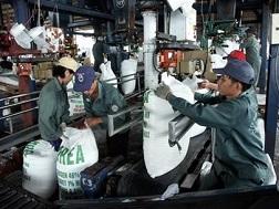 Sản xuất phân bón là ngành kinh doanh có điều kiện